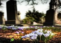 تفسير حلم المقابر في المنام لابن سيرين 1