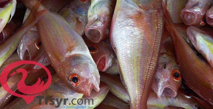 تفسير رؤية السمك في المنام العصيمي