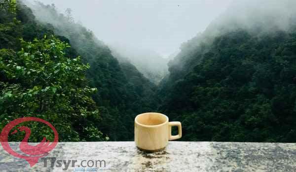 شرب الشاى فى المنام