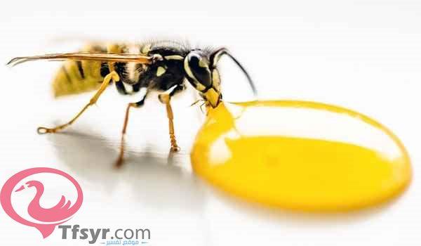 النحل في المنام للمتزوجة