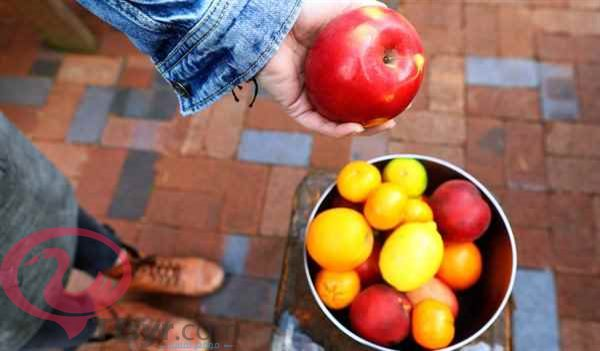 قطف التفاح في المنام
