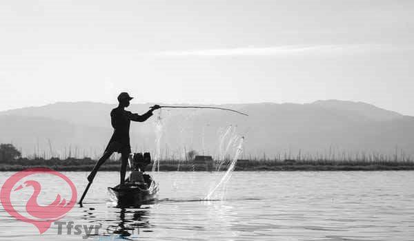 اصطياد السمك في المنام