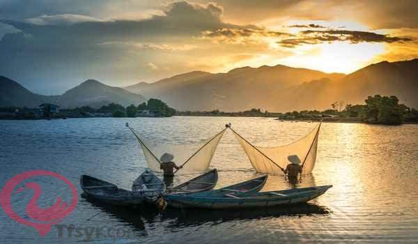 صيد السمك في الحلم